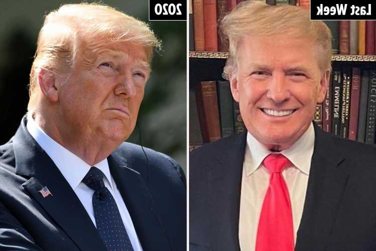 Trump looks slim after 15lb weight-loss fueling reelection rumors as svelte appearance leaves some thinking pic is FAKE