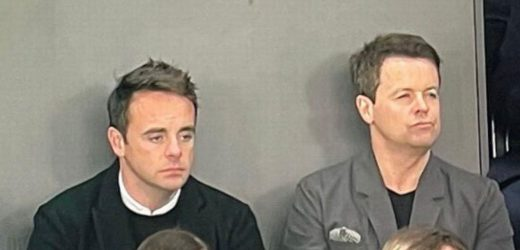 Ant and Dec fans baffled as they swap places during football match