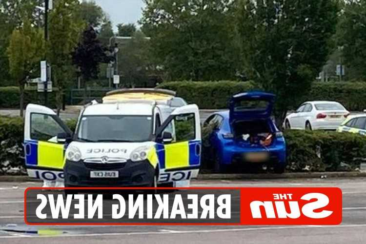 Man arrested for attempted murder after car driven at group of people in Essex