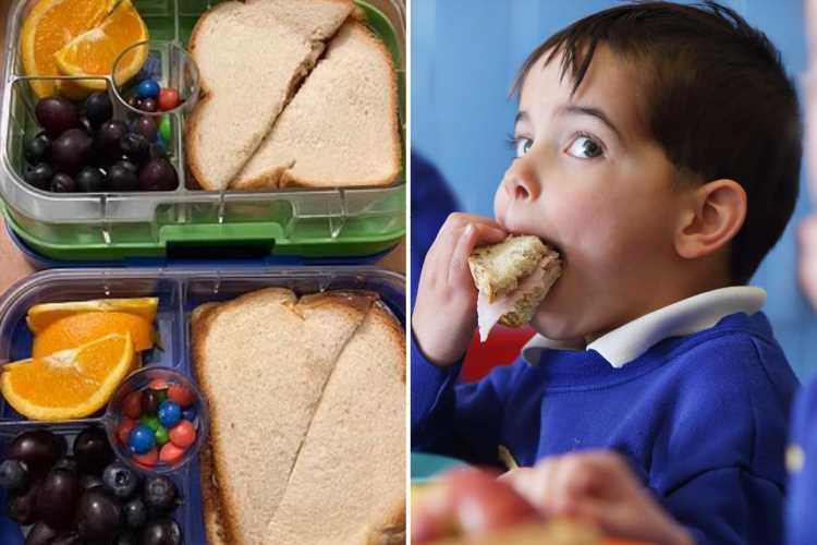 Mum shares her son's 'disgusting' lunchbox request and gets praised for how she handled the bonkers idea