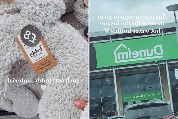 People are raving about Dunelm's £8 teddy fleece hot water bottle – and there's even an extra long version