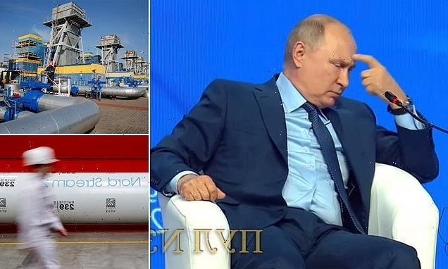 Putin accuses Europe of being 'out of your minds' over gas supply war