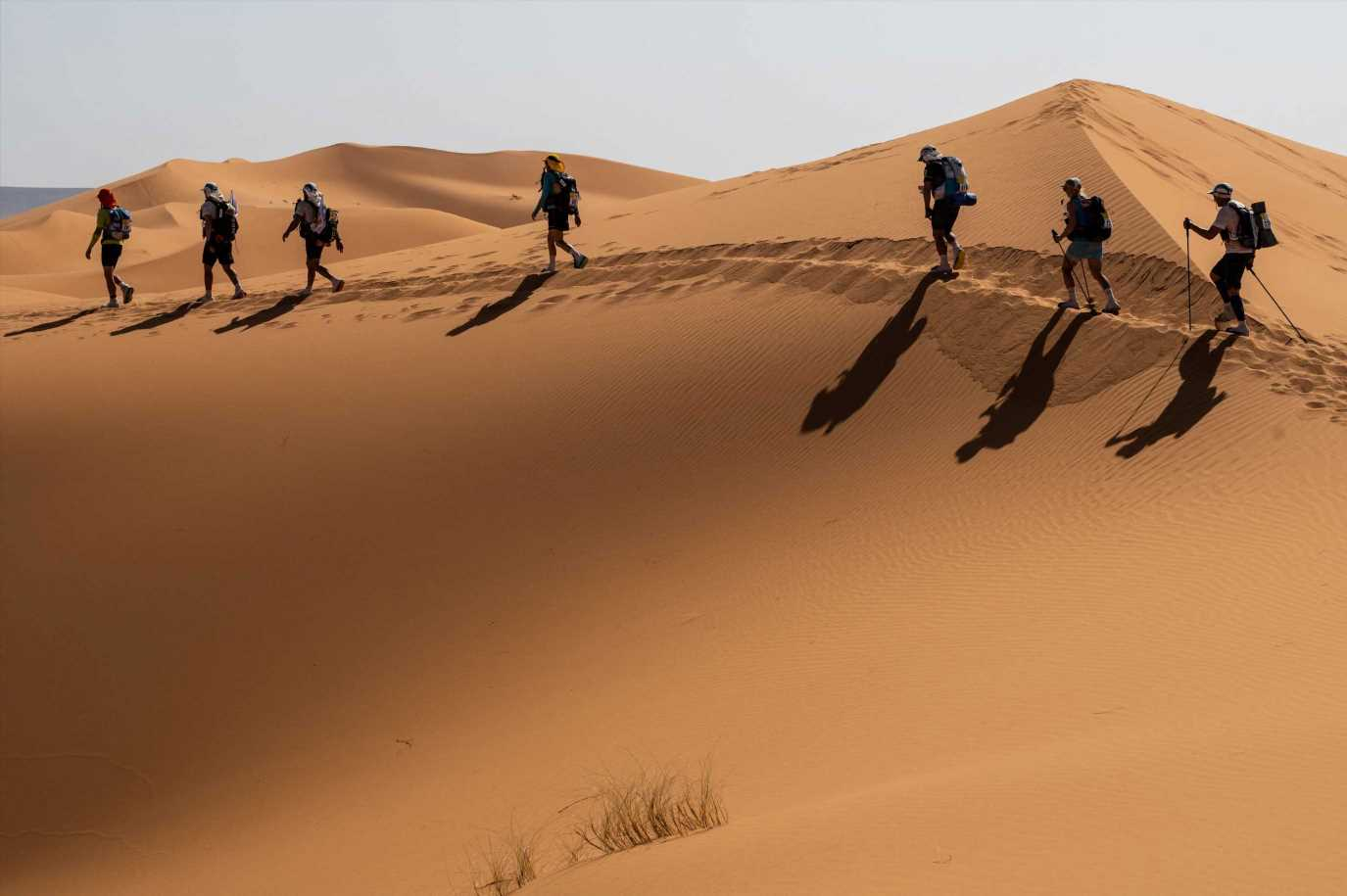 Runner in his 50s dies during gruelling Sahara Desert race – known as toughest on earth – after suffering cardiac arrest