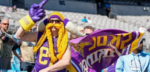 Vikings-Panthers fans battle it out for NFL fan fight of the year honors